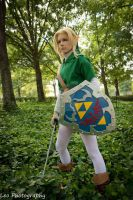 Link: Ocarina of Time 14 by AtemuMustang