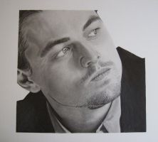 Leonardo DiCaprio finished by McSho
