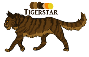 Tigerstar Reference Sheet by o0Masked-Bandit0o
