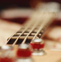 Bass Bokeh. by sp1nderella