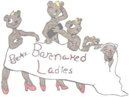 BareNaked Ladies Contest Entry by gizmo9084
