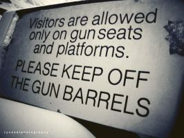 guns and gun barrels. by ryussei23