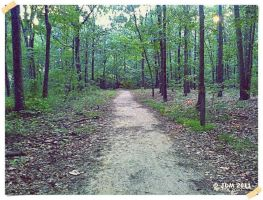 A Peaceful Path by JDM4CHRIST