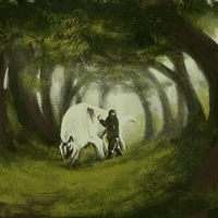 Through the forest by sealle