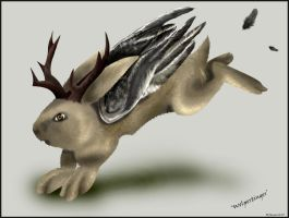Wolpertinger by deranged-flutterby