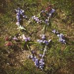 bluebell Pentagram by modgud-merry
