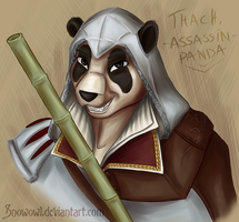 [RQ] Thach, the assassin panda by Snowowl
