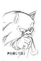 sonic cry 28tone down by bbpopococo