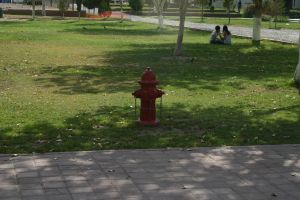 hydrant in the park by pablour026
