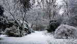 Winter Time by Onephotoaday