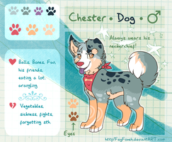 Chester - Reference Sheet by Fayven