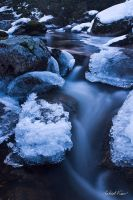 Icy Stream by robertvine