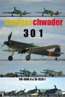 JG 301 , my summer squadron by DingoPatagonico