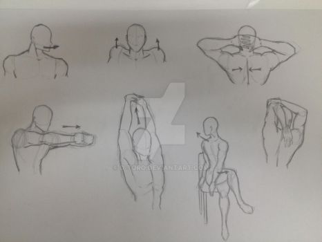 Muscle movement. Stretching exercises. by d-toro