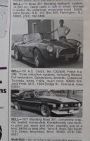 A real Cobra for $9,000 ? by finhead4ever