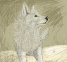 White Wolf by brushfirewolf