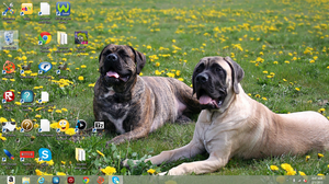 My desktop :P by britishweinerdog