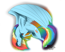 Rainbow Dash by probablyfakeblonde
