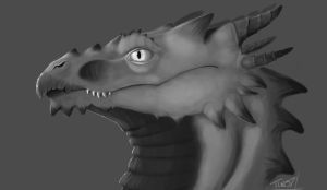 Greyscale Dragon Head by Caerulai