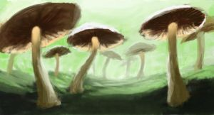 SDJ Mushrooms by jjpeabody