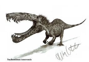 Suchomimus tenerensis by Teratophoneus
