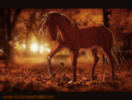 september evening by Indfries
