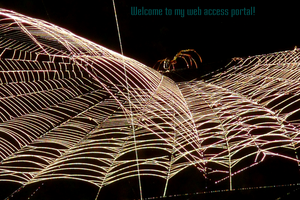 Welcom To My Web by JobobArikan