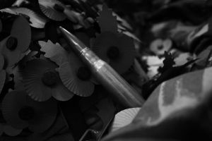 Poppies and the bullet by Greywolf37