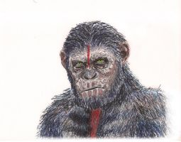 Dawn of the planet of the apes Caesar by oscartoonj