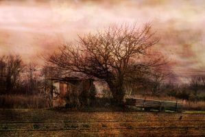 Dream cant by Anupthra