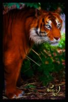 Jungle Cat by Lashington