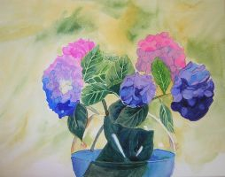 Hydrangeas by groundhog22