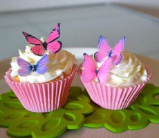 Butterflies on cupcakes!!!!!! by ClawdeenWolf1244