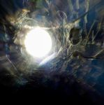 Enter the Void by Fassod