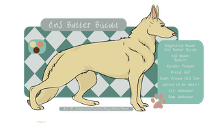 FEMALE-Butter Biscuit GSD by MagicMakerFarms