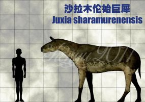 Juxia sharamurenensis by sinammonite