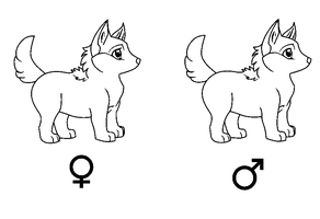 Lineart wolf puppies SMALL by DeLaMuerte-Stables