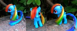 filly rainbow dash by seethecee