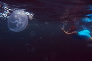 jellyfish by PandoraSelezneva
