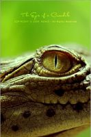 The Eyes of a Crocodile by OmarAziz