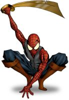 pirate spider-man by Tom1988