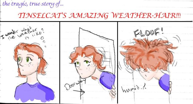Weather-Hair by Tinselcat