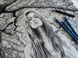 Meliai close up with pencils by tubyx