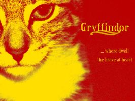 Gryffindor wallpaper 1 by Valardaughter