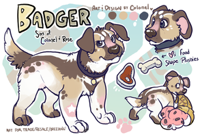 Badger by colonel-strawberry