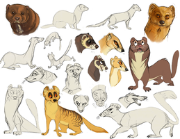 Mongooses and Mustelids by Bonday