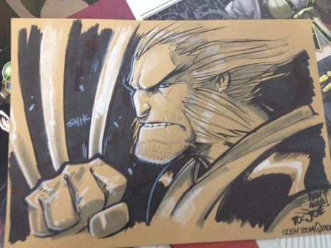 Wolverine by biroons