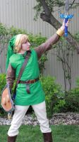 For Hyrule by Triceranuke