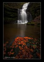 autumn falls by theoden06