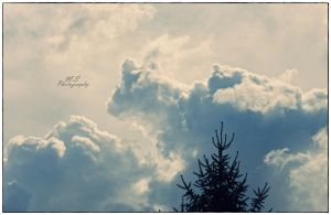 The sky by moonik9